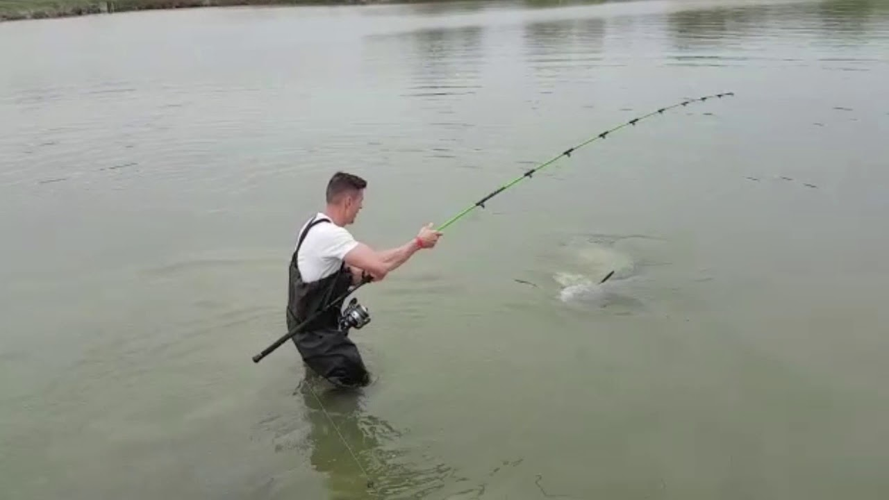 Delphin WALKYRA Въдица