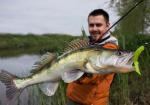 Силиконова примамка Dainty 8.5см Crazy Fish