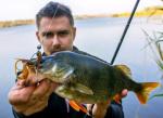 Силиконова примамка Crazy Fish Nimble 10см
