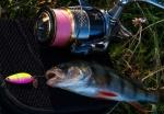 Клатушка Sense 3гр. Crazy Fish
