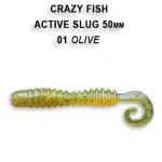 Active slug 50mm Crazy Fish